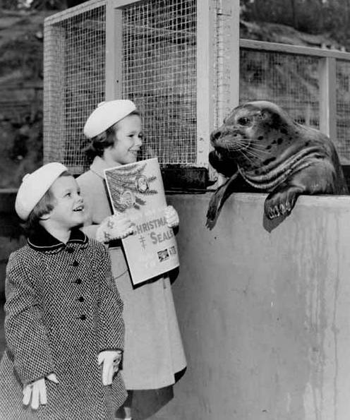 Warren Peterson's daughters holding Christmas Seals poster next to a live seal during Christimas Seals campaign, November 12, 1957