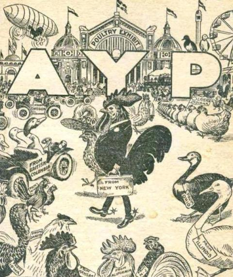 Front cover illustration from Official classifications, rules and regulations of the poultry and pigeon exhibit