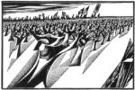 Vineyard-March